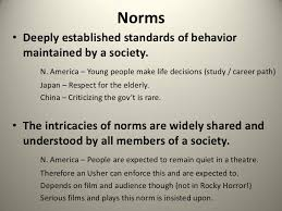 norms values and sanctions norms•