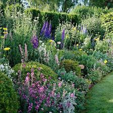 cottage garden design. Exellent Garden Stately Delphiniums Are The Backbone Of This Colorful Cottage Garden Plan Throughout Cottage Garden Design A