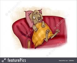 pets humorous ilration of happy dog on sofa