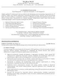 E Commerce Manager Resume E Commerce Manager Resume Sample