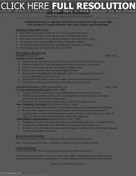 Resume Summary Examples For Customer Service Resume Work Template