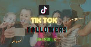 Buy TikTok Followers Cheap from $2.69   Grambulk