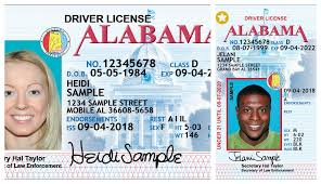 New Driver's 1 License Cullman Tribune To Beginning Add Alea Numbers Dec The Digit