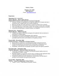 Insurance Agent Resume Sample Entry Level Objective Sales Examples