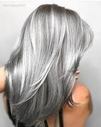 excellent grey hair highlights ideas for hair colours