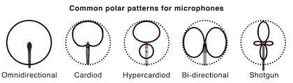 Microphone Polar Patterns Awesome Recording Interview Audio For All Budgets Studiodaily Network