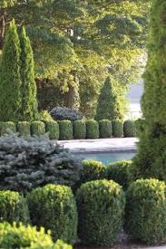 Small Picture 82 best Conifer Combinations images on Pinterest Landscaping