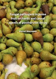 Fungal pathogens in pome fruit orchards and causal agents of postharvest  decay