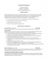 Internal Resume Sample Internal Resume 10 Chief Auditor Sample