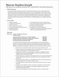 Resume Professional Summary Examples New Resume Templates Summary Examples For Surprising Objective Sample