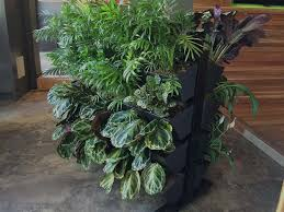 Small Picture About Vertical Gardens in Australia