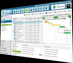 Project Portfolio Management Software Dashboard And Reports | Zilicuspm