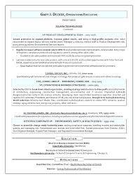 Safety Officer Resume Sample Safety Director Resume Mazard Info