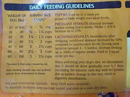 Zignature Feeding Chart Zignature Kangaroo Formula Dog Food Buy Online In Uae