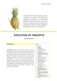 West And Arrow Pineapple Light Pdf Evolution Of Pineapple