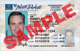 Identification Indicators Non-driver Drivers Card Nddot License And -