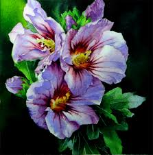 purple hibiscus essays order paper online arenashawn pot com