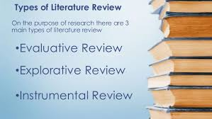 Selecting a Research Problem and Literature Review   ppt video     Eloquent Science