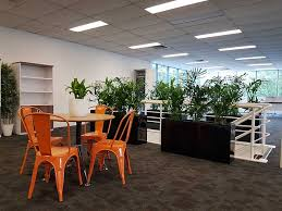 Tropical office plants Popular Indoor Office Plants Black Troughs Interior Office Plants Office Plants Archives Tropical Plant Rentals