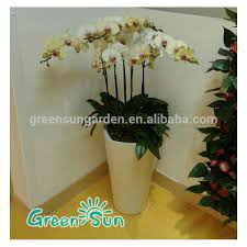 office flower pots. office flower pots meeting room big for tree oversize o