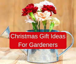 gifts for the gardener who has everything gift ideas gardeners have australia
