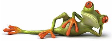 Image result for frogs divider