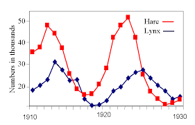 Line Graphs Infinity Stat