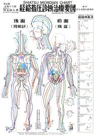 the 136 best images about meridians on pinterest pressure points Meridian Lines Body Map shiatsu meridian chart meridian lines body map