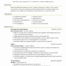 Professional Summary On A Resume Examples Amazing Corporate Strategy ...