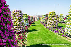 Small Picture Dubai Miracle Garden The Most Beautiful and Largest Flower Garden