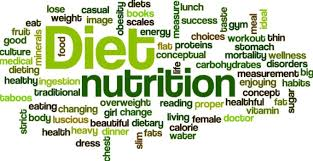 Daily Diet Chart For Good Health Silpac I Will Provide Personal Nutrition Guide Diet Plan Diet Chart For 5 On Www Fiverr Com