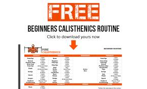 pure calisthenics bodyweight training