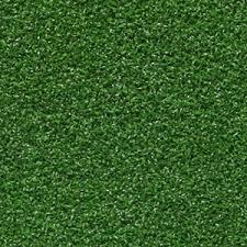 carpet grass. putting green carpet, golf carpet. \ carpet grass
