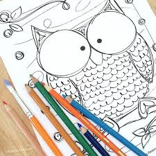 Discover all our printable coloring pages for adults, to print or download for free ! Owl Coloring Pages 100 Directions