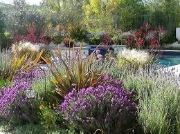 Small Picture Drought Tolerant Landscape Garden Design Erins Gardens