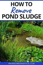 how to remove pond sludge in 2021