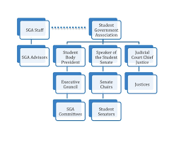Senate Hierarchy Chart Sga Overview