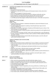 Team Leader Resume Examples Production Team Leader Resume Samples Velvet Jobs