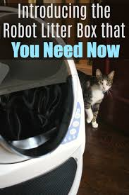 i remember the first time i saw a of a robot litter box show up in my facebook newsfeed i thought it was something right out of the future and it