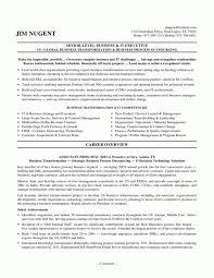 Ssis Developer Resume Sample