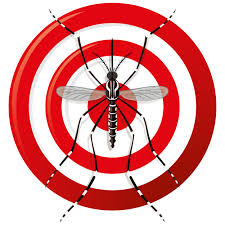 bingham pest control. Fine Bingham Tampa Mosquito Property Treatment In Spring Hill And St Petersburg Call  Binghams At 727323 Throughout Bingham Pest Control T