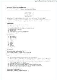 Import Coordinator Resume Sample Awesome Project Coordinator Resume