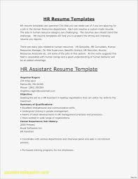 Best Of Resume Online Template Business Document
