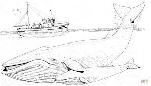 Blue Whales Mother and Baby under the Boat coloring page | Free ...