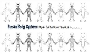 Small Picture Picture Human Body Kids Human Anatomy Chart