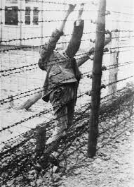 barbed wire fence holocaust. Brilliant Holocaust The Body Of A Soviet Prisoner War Who Committed Suicide On An  Electrified Barbed Wire Intended Barbed Wire Fence Holocaust
