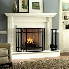 ... Gas Fireplace Glass Door Cleaner Doors Energy Efficiency Wood ...