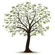 169 Best Family Tree Art Images In 2019 Family Search Family Tree