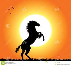 black horse rearing in sunset. Unique Horse Horse Rearing At Sunset A Horse Rearing At Sunset Editable Illustration  Royalty Free Inside Black In Sunset N