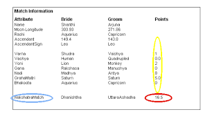 Birth Chart Matchmaking Male Details